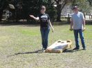Cornhole Tournament_49